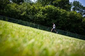 jog this spring